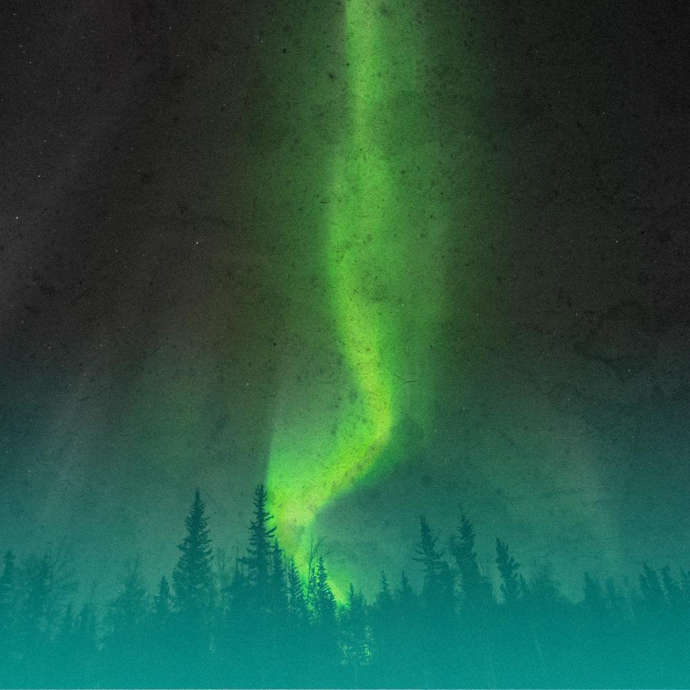 Norrsken över Dalaskogen
